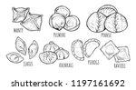 vector illustration of... | Shutterstock .eps vector #1197161692
