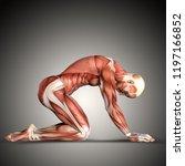 3d render of a  male medical... | Shutterstock . vector #1197166852