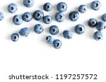 berry background. fresh berry... | Shutterstock . vector #1197257572
