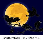 Full Moon  A Crow Sitting On A...
