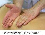 hands of a massage therapist... | Shutterstock . vector #1197290842