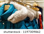 azure winter jackets with fur... | Shutterstock . vector #1197309862