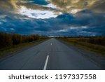 deciduous autumn forest grows... | Shutterstock . vector #1197337558