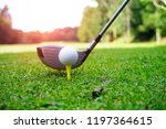 golf ball and golf club in...   Shutterstock . vector #1197364615