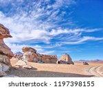 bolivia  salar de uyuni  arbol...   Shutterstock . vector #1197398155