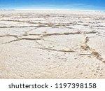 bolivia  salar de uyuni scenic...   Shutterstock . vector #1197398158