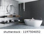 interior of luxury bathroom... | Shutterstock . vector #1197504052