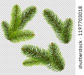 fir tree isolated isolated... | Shutterstock .eps vector #1197703018