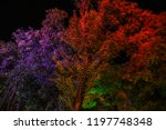 multicolored trees in the park...   Shutterstock . vector #1197748348
