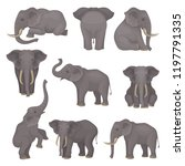 flat vector set of elephants in ... | Shutterstock .eps vector #1197791335
