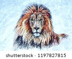 lion is the king of beasts.... | Shutterstock . vector #1197827815