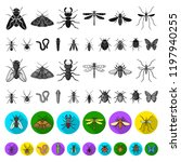 different kinds of insects flat ... | Shutterstock .eps vector #1197940255