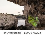 seacoast of cap d ail at...   Shutterstock . vector #1197976225