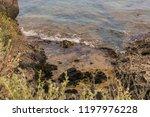 seacoast of cap d ail at...   Shutterstock . vector #1197976228