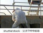professional asbestos abatement | Shutterstock . vector #1197999808