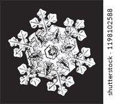 white snowflake isolated on... | Shutterstock .eps vector #1198102588