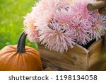 autumn decorations during the... | Shutterstock . vector #1198134058