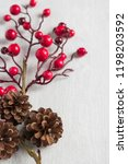 red berries holly on white. red ... | Shutterstock . vector #1198203592
