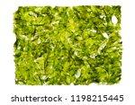 dried nori seaweed laminaria... | Shutterstock . vector #1198215445