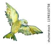 sky bird green colibri in a... | Shutterstock . vector #1198310758