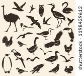 birds big collection  stylized... | Shutterstock .eps vector #1198429612