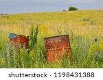 abandoned field   meadow  ...
