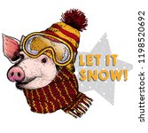 hand drawn portrait of pig...   Shutterstock .eps vector #1198520692