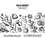 wild berry drawing. hand drawn... | Shutterstock .eps vector #1198550182