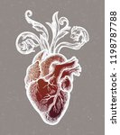 decorative naturalistic heart...   Shutterstock .eps vector #1198787788