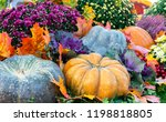 autumn composition with... | Shutterstock . vector #1198818805
