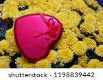 autumn flowers in a pot. yellow ...   Shutterstock . vector #1198839442