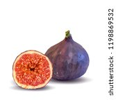 fresh  nutritious  tasty figs.... | Shutterstock .eps vector #1198869532