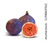 fresh  nutritious  tasty figs.... | Shutterstock .eps vector #1198869562