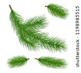pine tree branches. christmas... | Shutterstock .eps vector #1198985515