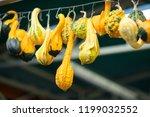 different pumpkins on city... | Shutterstock . vector #1199032552