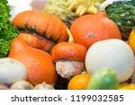 different pumpkins on city... | Shutterstock . vector #1199032585