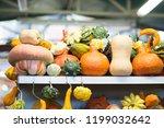 different pumpkins on city... | Shutterstock . vector #1199032642