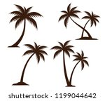 detailed coconut tree... | Shutterstock .eps vector #1199044642