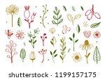 herbal tea and floral doodle... | Shutterstock .eps vector #1199157175