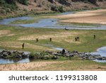panorama and wildlife on the... | Shutterstock . vector #1199313808