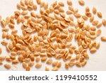 roasted untreated pumpkin seeds ... | Shutterstock . vector #1199410552