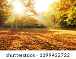 sunlight through trees city... | Shutterstock . vector #1199432722