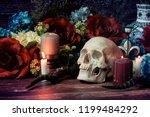 Skull And Flower Still Life...