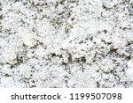 rough plaster walls  vintage or ... | Shutterstock . vector #1199507098