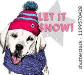 close up  portrait of labrador...   Shutterstock . vector #1199570428