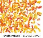oak  maple  wild ash rowan... | Shutterstock .eps vector #1199610292