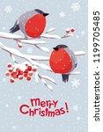 funny bullfinches and rowan...   Shutterstock .eps vector #1199705485