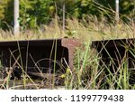 old rusty disassembled railway... | Shutterstock . vector #1199779438