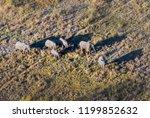 okavango delta  okavango...   Shutterstock . vector #1199852632