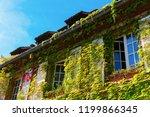 picturesque vine clad facade of ... | Shutterstock . vector #1199866345